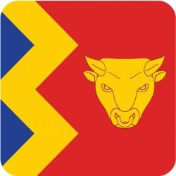 Birmingham Flag Coater