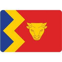 Birmingham Flag Fridge Magnet